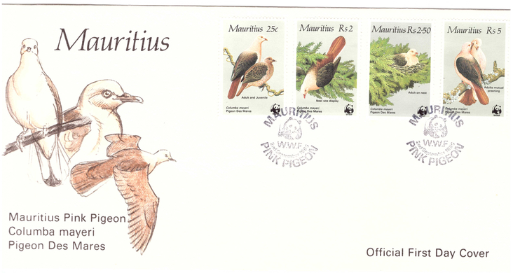1985 2 Sep - Pigeon des mares OFC