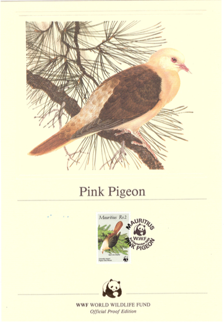 1985 2 Sep - pink pigeon official proof_2