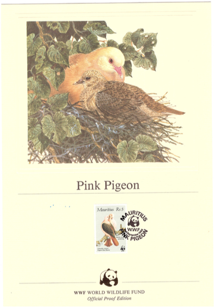 1985 2 Sep - pink pigeon official proof_4