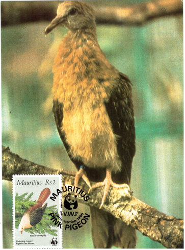 1985 2 Sep - WWF postcard_2