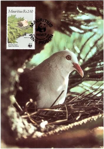 1985 2 Sep - WWF postcard_3