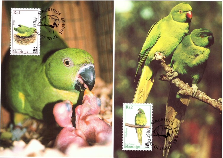2003 19 March - Echo Parakeet postcards_1