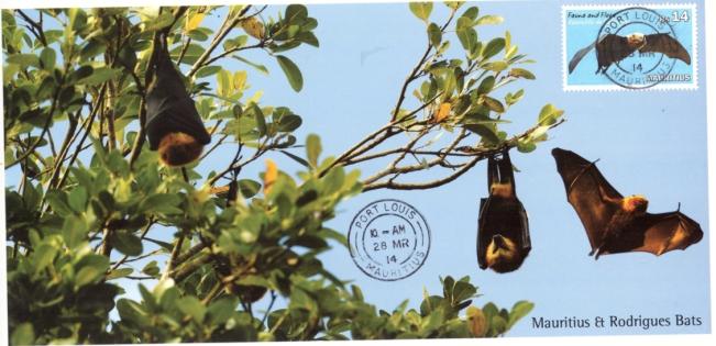 2014 28 March - Bats postcard