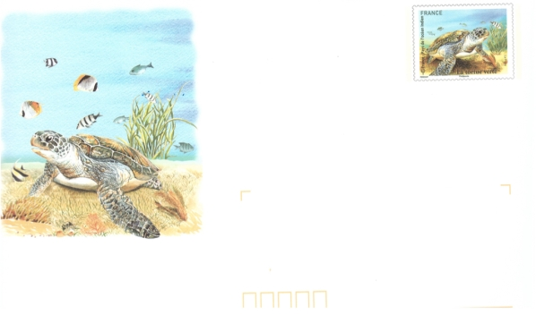 2014 9 Oct - Tortue Verte prepaid enveloppe