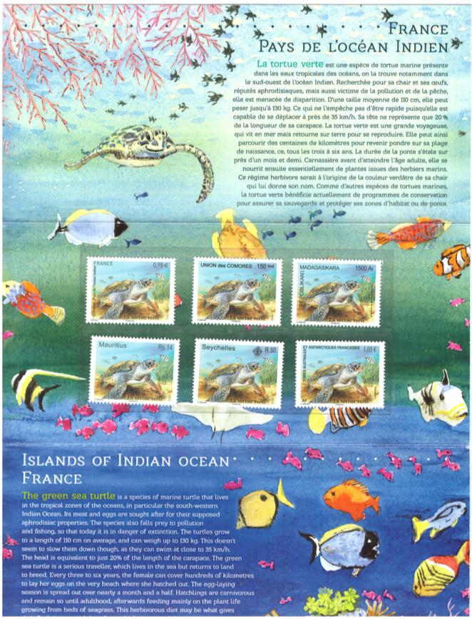 2014 tortue de mer booklet1